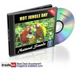 Thumbnail Hot Jungle Day Natural Sounds Royalty Free MRR!