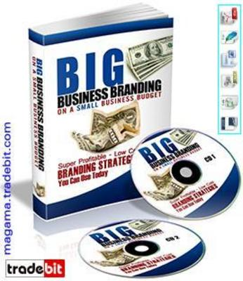 Product picture Big Business Branding On A Small Business Budget PLR!